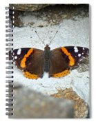 Red Admiral Butterfly - Vanessa Atalanta Spiral Notebook