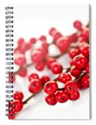 Red Christmas Berries Spiral Notebook