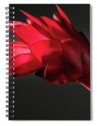 Red Ginger Alpinia Purpurata Flower Spiral Notebook