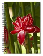 Red Ginger Lily Spiral Notebook