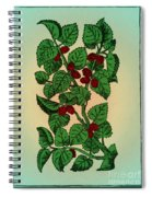 Red Mulberry Spiral Notebook
