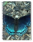 Red Spotted Purple Swallowtail Butterfly Spiral Notebook