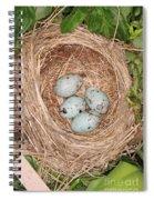 Red-winged Blackbird Nest Spiral Notebook