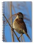 Reed Warbler Spiral Notebook