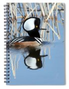 Reflections Spiral Notebook