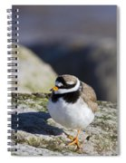 Ringed Plover Spiral Notebook