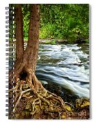 River Through Woods Spiral Notebook