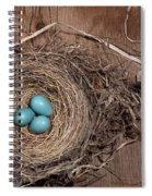 Robins Nest With Eggs Spiral Notebook