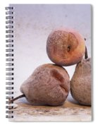 Rotten Pears And Apple. Spiral Notebook