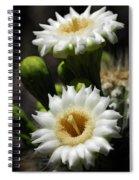 Saguaro Blooms  Spiral Notebook