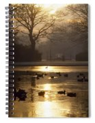 Saint Stephens Green, Dublin, Co Spiral Notebook