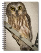 Saw-whet Spiral Notebook
