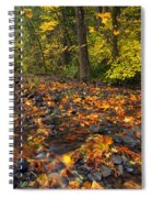 Scattered About Spiral Notebook
