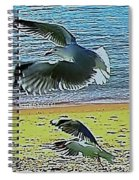 Sea Gulls In Flight  Spiral Notebook