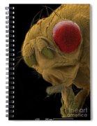 Sem Of A Mutant Fruit Fly Spiral Notebook