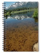 Shallow Water Reflections Spiral Notebook