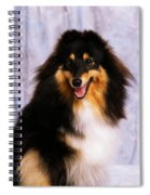 Shetland Sheepdog Portrait Of A Dog Spiral Notebook
