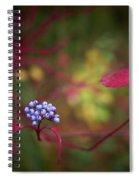 Siberian Dogwood Spiral Notebook