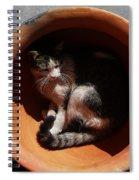 Siesta 3 Spiral Notebook