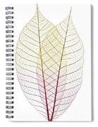 Skeleton Leaves Spiral Notebook