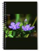 Skyflower Spiral Notebook