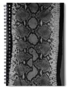 Snake Skin In Black And White Spiral Notebook