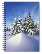 Snow-covered Pine Trees Spiral Notebook