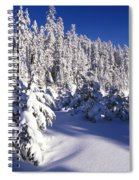 Snow-covered Pine Trees On Mount Hood Spiral Notebook