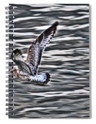 Soaring Gull Spiral Notebook