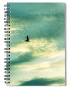 Solo Flight Spiral Notebook