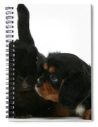 Spaniel And Rabbit Spiral Notebook