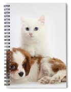 Spaniel Puppy And Kitten Spiral Notebook