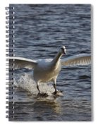 Splashdown - Water Skiing Spiral Notebook