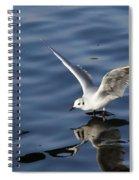 Splashdown Spiral Notebook