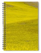 Spring In Spain Spiral Notebook