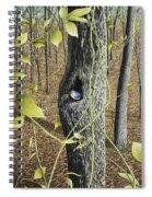 Springtime At Collins Creek Spiral Notebook