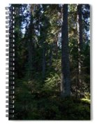 Spruces Spiral Notebook