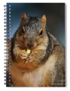 Squirrel Eating Corn Spiral Notebook