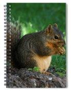 Squirrel Eating Spiral Notebook