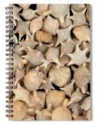Star Sand Foraminiferans Spiral Notebook