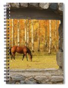 Stone Window View And Beautiful Horse Spiral Notebook