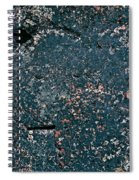 Stoneface At Hossa With Stone Age Paintings Spiral Notebook