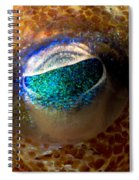 Stubby Squid Spiral Notebook