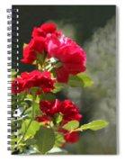 Summer's Bloom Spiral Notebook