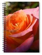 Sunburst Spiral Notebook
