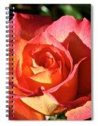Sunny Pink Spiral Notebook