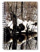 Swamp Spiral Notebook