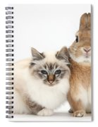 Tabby-point Birman Cat And Rabbit Spiral Notebook