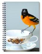 Tea Anyone Spiral Notebook