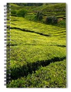 Tea Gardens Spiral Notebook